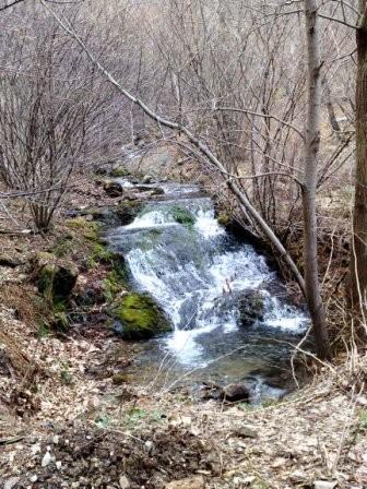 2009-04-04_08.jpg